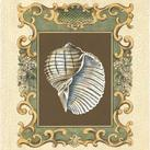 Chariklia Zarris - Mermaid's Shells I