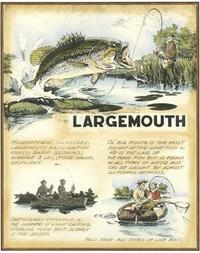 Robert Settle - Large Mouth